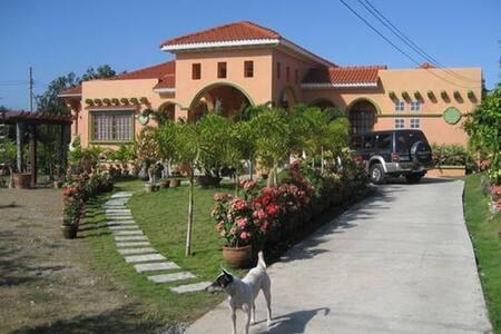 Kuli-Bang-Bang - Maya - San Juan - Haus