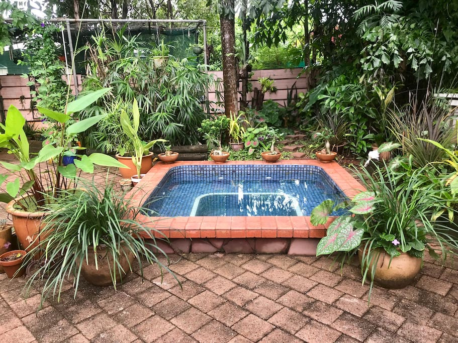 Private back yard spa for your pleasure