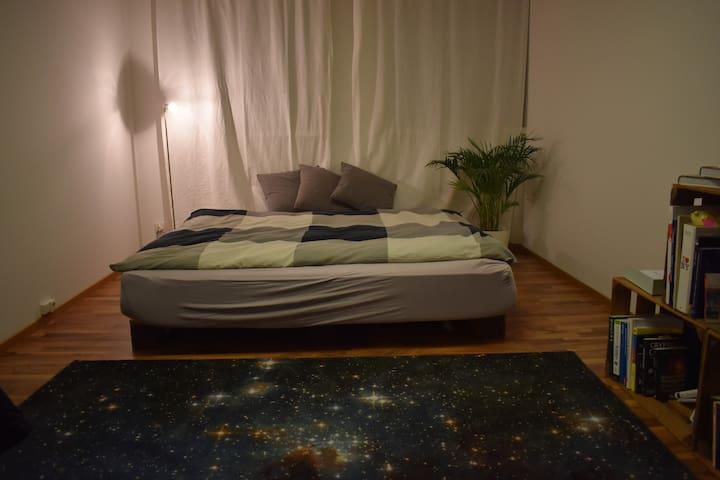 Zimmer im Zentrum von Zürich!