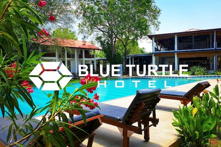 Blue Turtle Hotel (Lonely Planet's top choice)
