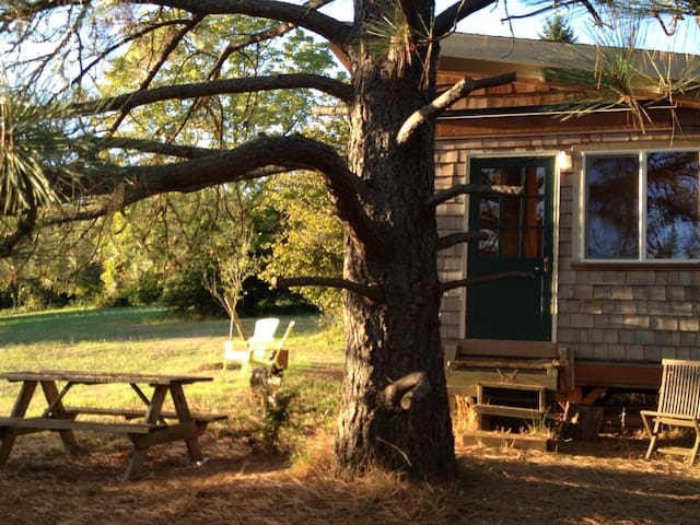 Private Wine Country Farm Bunkhouse - Dundee - Cabana