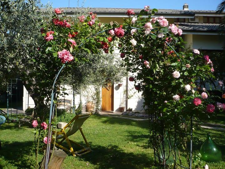 Villa Carol Mare Abruzzo Costa Trabocchi  (Ch