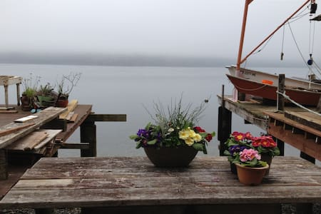 Beach cabin in Tacoma - Tacoma - Cabin