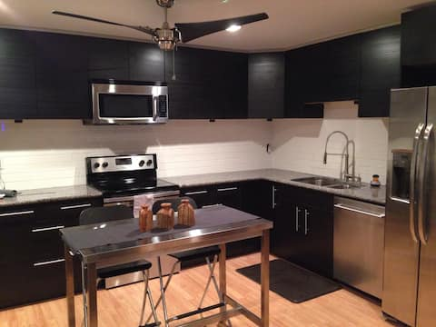 Modern Downtown 1 King BD/1BA Apartment (#2)