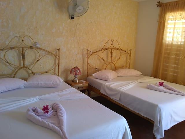 Habitación Independiente , 2 camas matrimoniales con capacidad para 4 personas,buena iluminación y muy espaciosa .