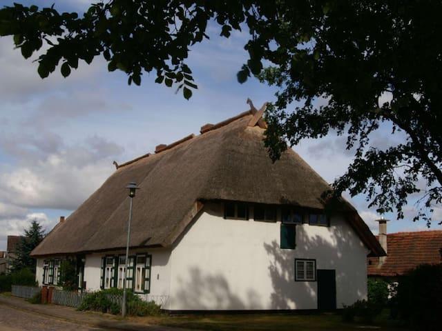 FeWo in Reetgedecktem Bauernhaus - Neu Poserin - Apartment