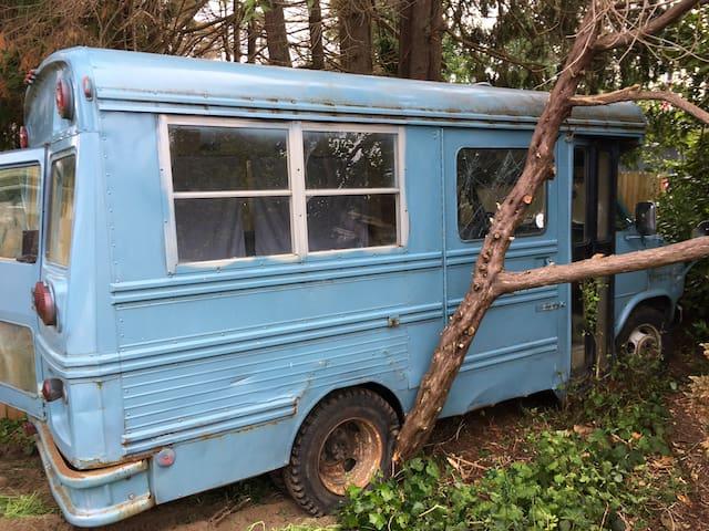 One Small Blue School Bus