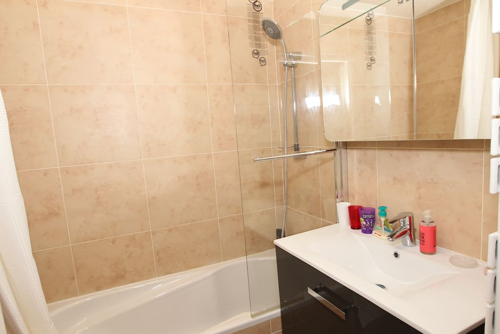All NEW Bathroom: bathtub, washbasin, cupboard, toilet, towel drying heater, clean towels, hair dryer, iron, shower gel, shampoo, soap, accessible from the room