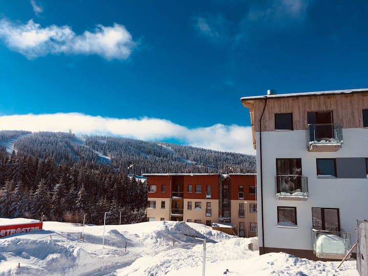 Studio Apartment in Klinovec Views (307)