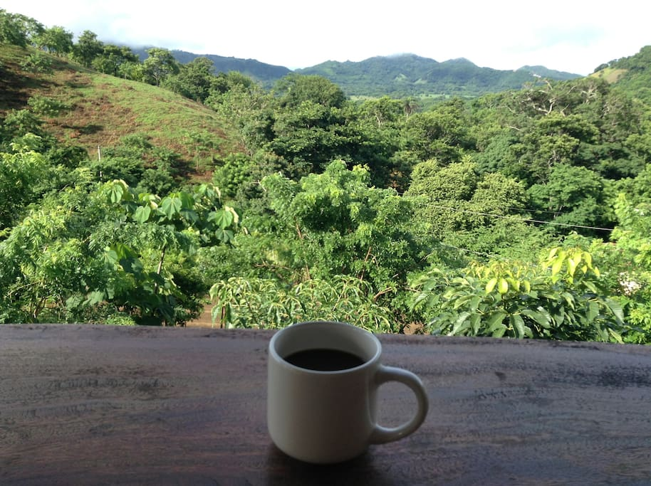 Enjoy your morning coffee from the patio overlooking the lush jungle.