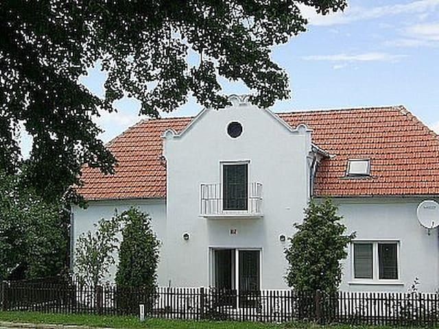 Large Villa in Selo Prekmurje