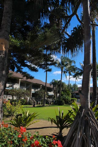 The grounds are landscaped with Native Hawaiian foliage