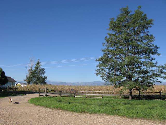 Country home with Rocky Mtn views! - Fort Collins - Ev