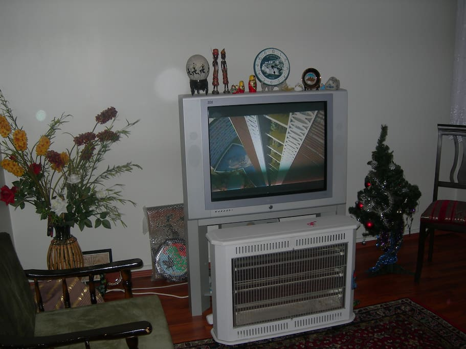 IT IS FRONT ROOM WHICH HAS A LCD TV AND A CD PLAYER AND AN EXTRA ELECTRİCİTY  HEATER