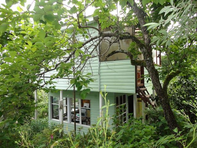 Комнаты в уютном доме на природе! - RU - Hus