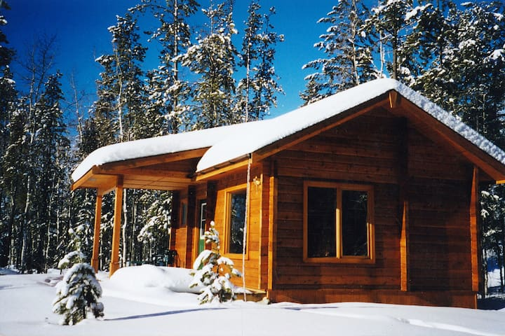 Mica Mountain Lodge &  log cabins & tours