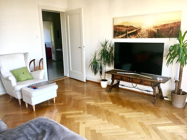Lake view apartment in central Lausanne