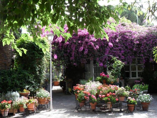 Habitación preciosa en un paraiso - Cordoba - Bed & Breakfast