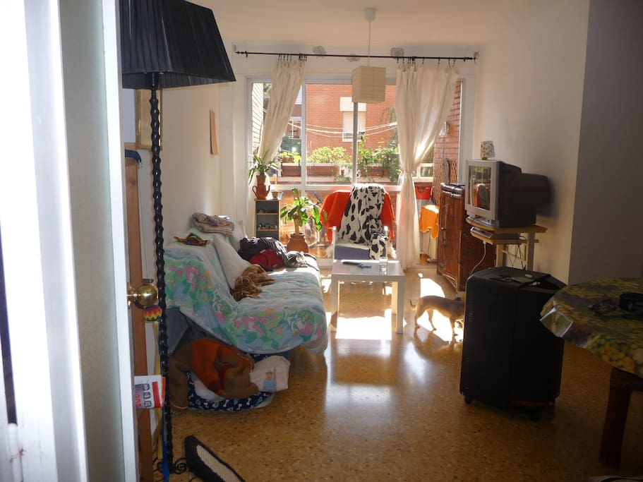 Habitaci n individual zonas verdes bed and breakfasts en alquiler en alicante comunidad - Alquilo habitacion en alicante ...