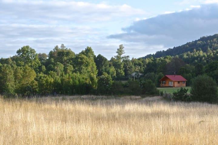 """Cabaña """"Notros""""Villarrica rural"""