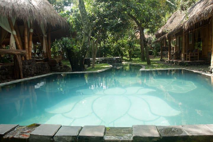 Omunitybali  Jungle View Room