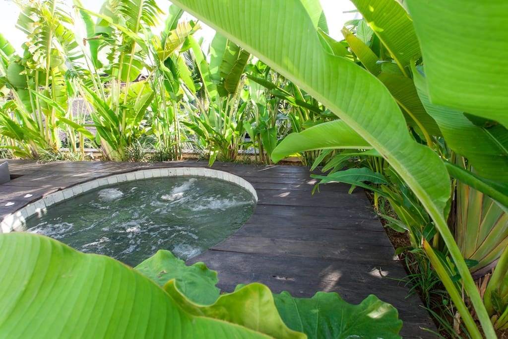 Jacuzzi surrounded by garden plants for more privacy