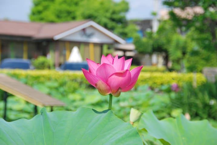 北成庄蓮花荷畔度假民宿夏之舞雙人房一間 - Luodong Township - Villa