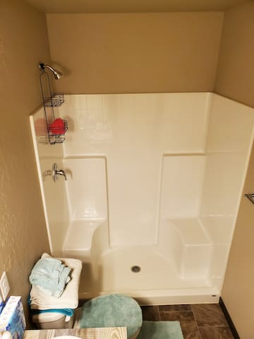 Master bed and bath for rent