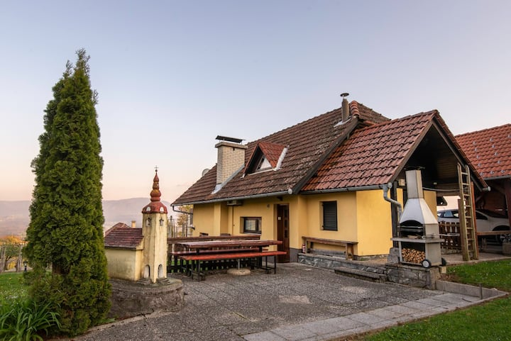 Vineyard cottage Hočevar