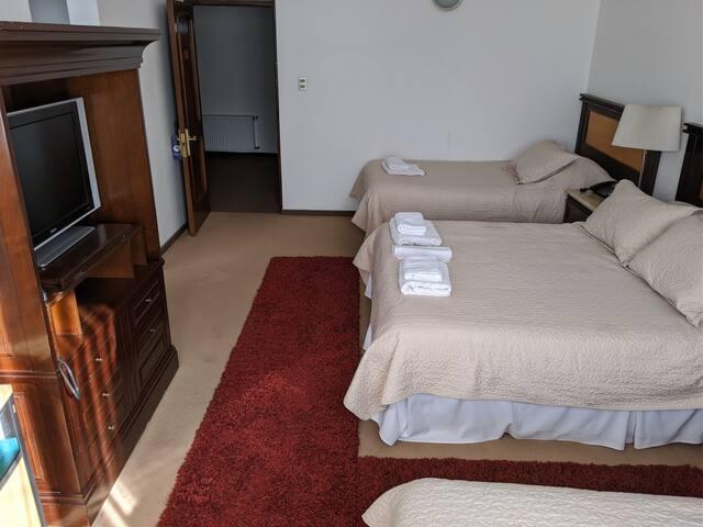 Hotel Lican Ray