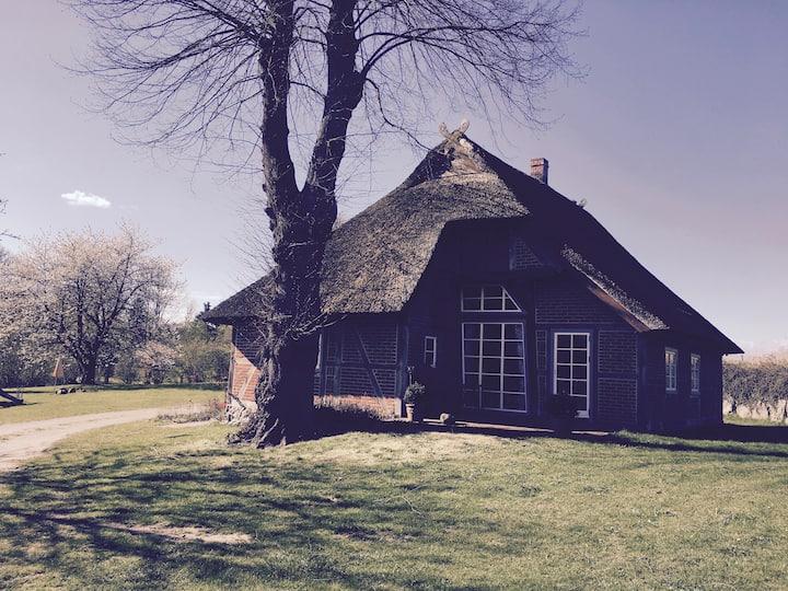 Charmante historische Reetdachkate Nähe Lübeck