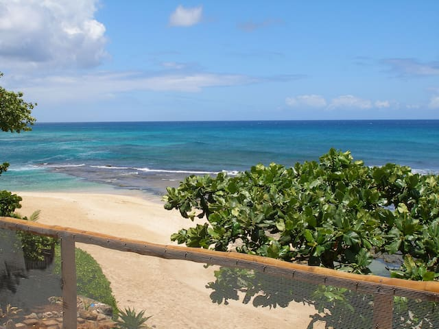 Beach out front is all white sand with a large swimming lagoon, tidepools, great snorkel spot !
