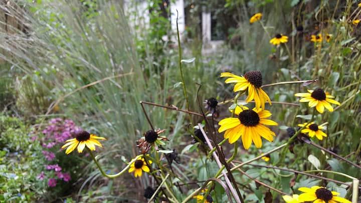 Brklyn Hts Luxury - Garden Calm & Downtown Verve