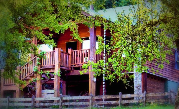 Holiday Home on the Husky Farm