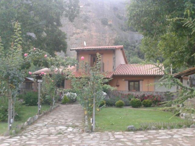 Habitaciones en casa de campo - Panzares - Bed & Breakfast