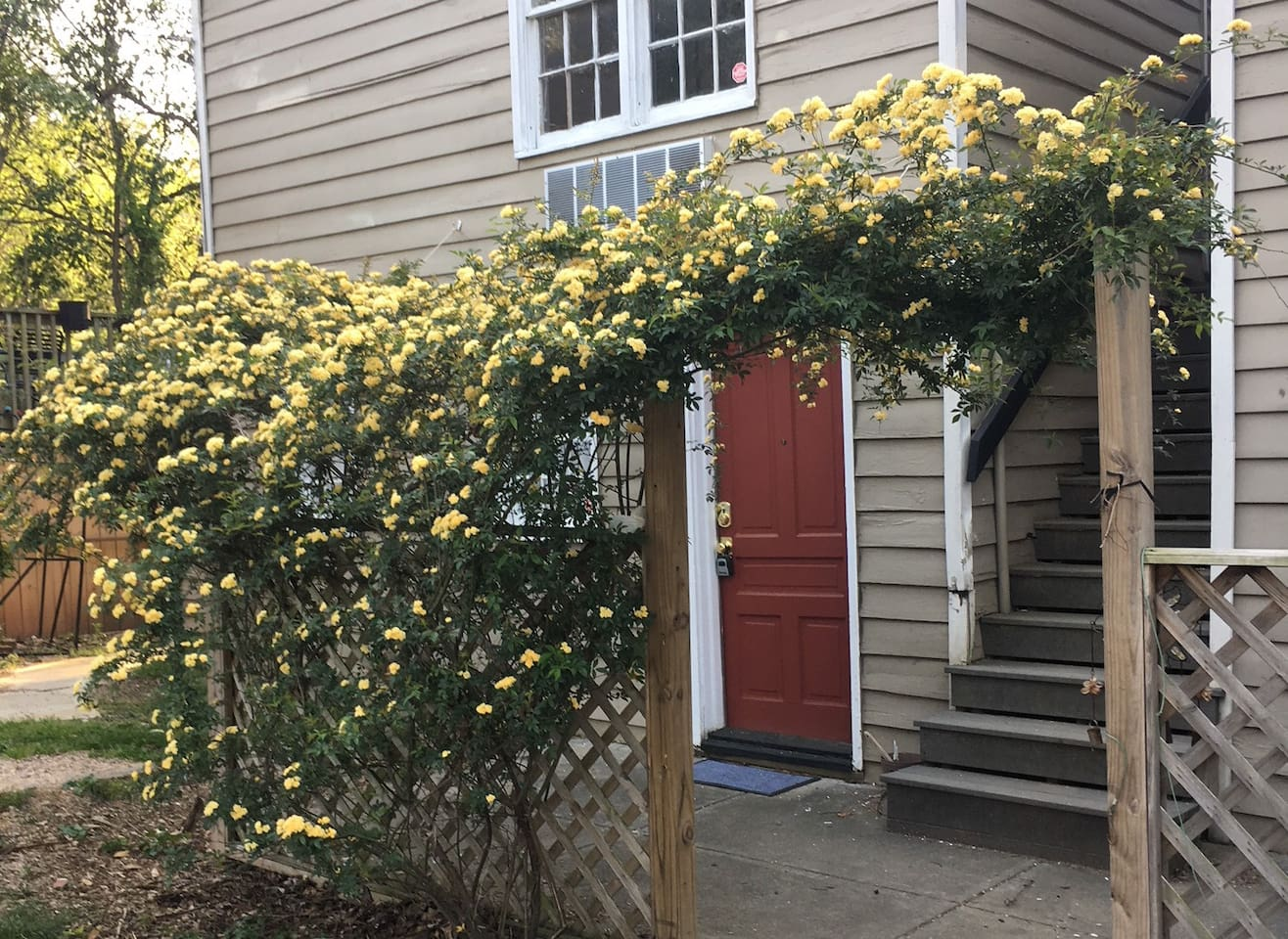 Charming, Quiet and Private Bungalow  - Walk to Glenwood Ave Downtown Raleigh