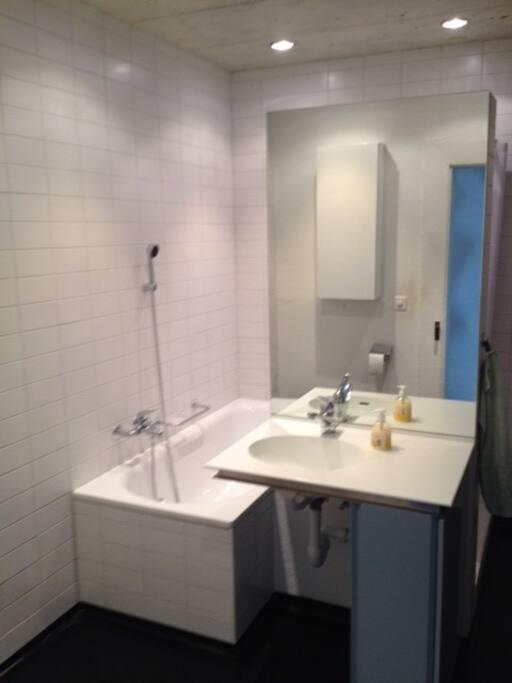 stilvolles privatzimmer in nidau h user zur miete in nidau kanton bern schweiz. Black Bedroom Furniture Sets. Home Design Ideas