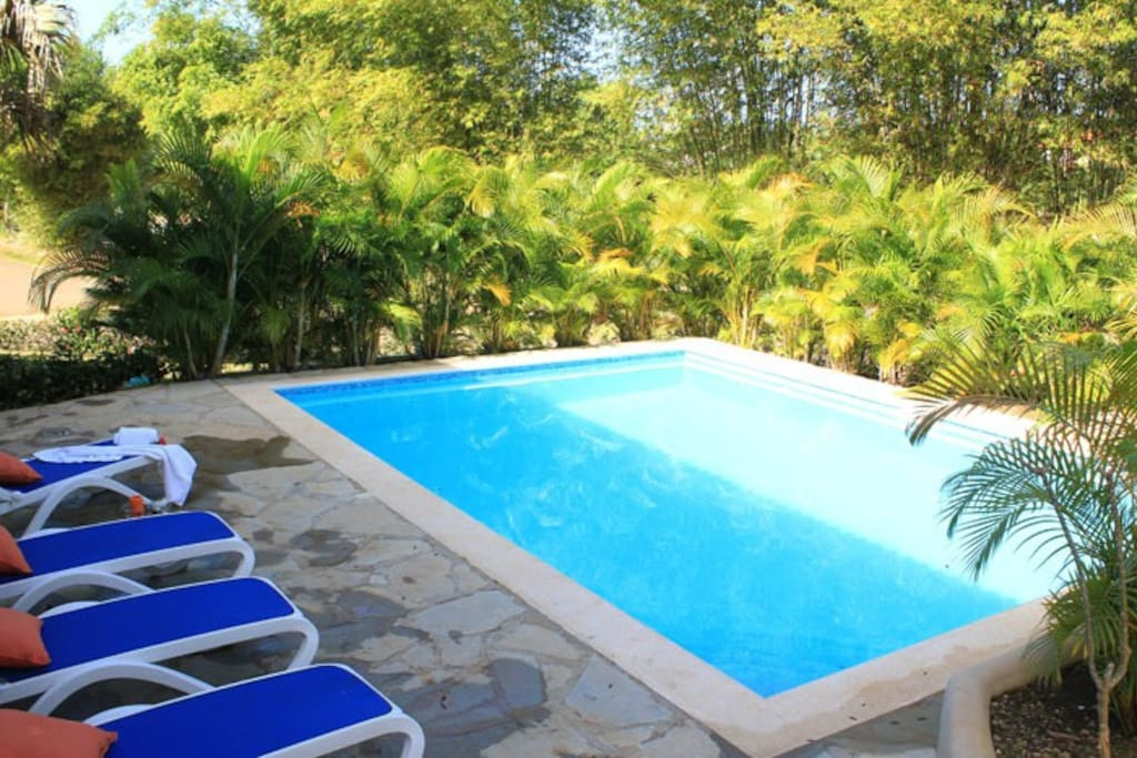Private pool with tropical garden