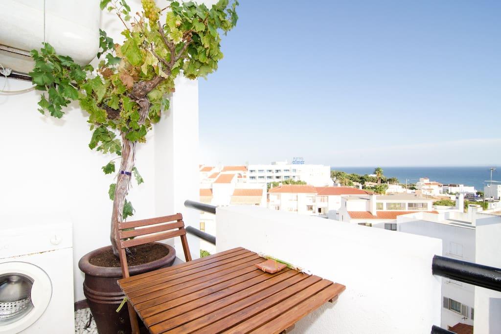 Portuguese Grape Vine, Clothes Washing Machine,Ocean Views!