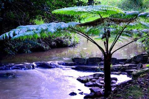 Waterfall Hideout RainforestRetreat