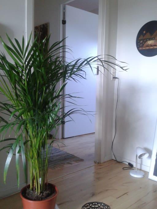 My Living-Room