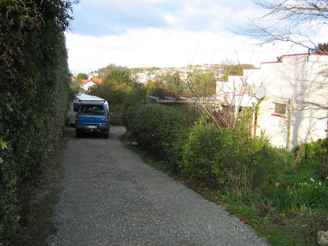 parking in the driveway