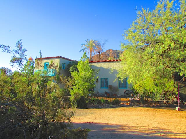 Camelback Mt. Historic Adobe home - ฟีนิกซ์ - ที่พักพร้อมอาหารเช้า