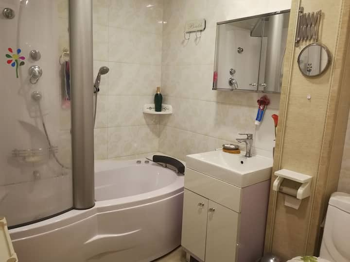 2 bedroom apartment near Circus 350$