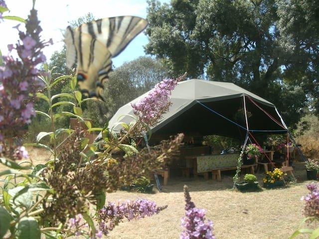 Off-grid riverside geodome campsite - Barril de Alva - Other