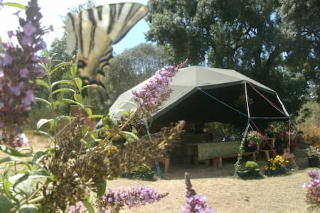 Off-grid riverside geodome campsite - Barril de Alva