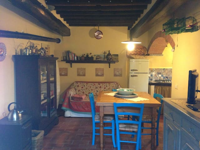 Casa Dania a Domazzano Lucca  - Domazzano - Apartamento