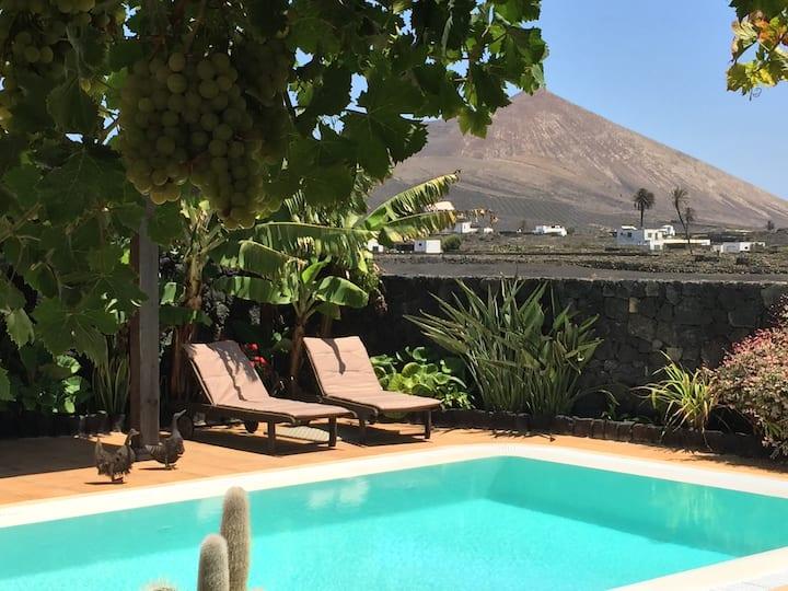 Relax entre volcanes y viñedos.