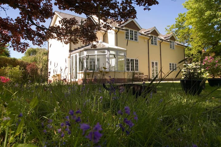 New Forest Retreat Holiday Let
