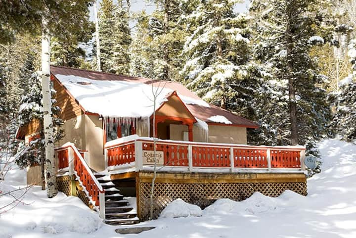 Taos Mountain Cabin